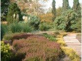 Dendrologischer Garten Pruhonice