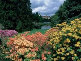 Pruhonice  - Blütenpark und Schloss (UNESCO geschützt)